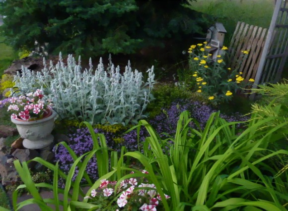 garden blues
