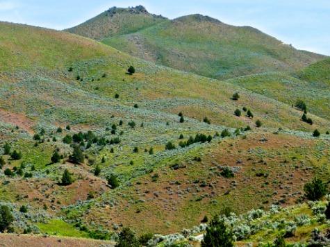 pastels taking turns on the hillsides