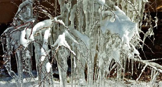 Flash Frozen