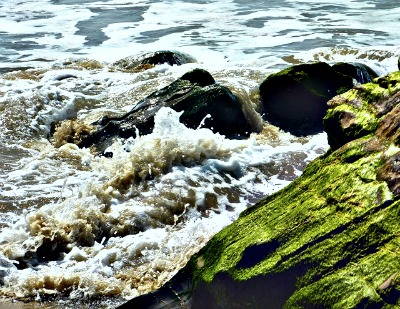 surf on mossy rock2